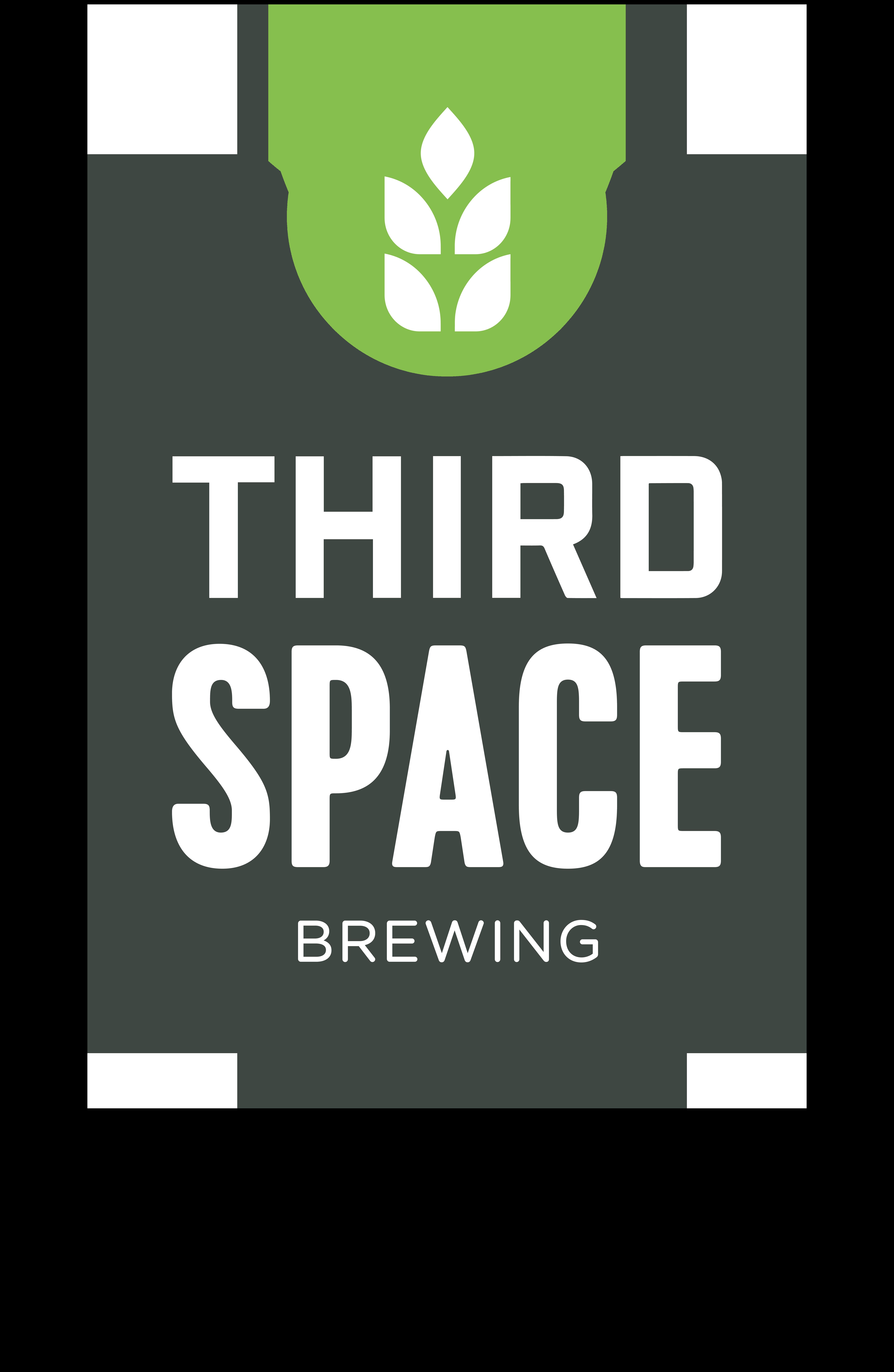 Third Space Brewing